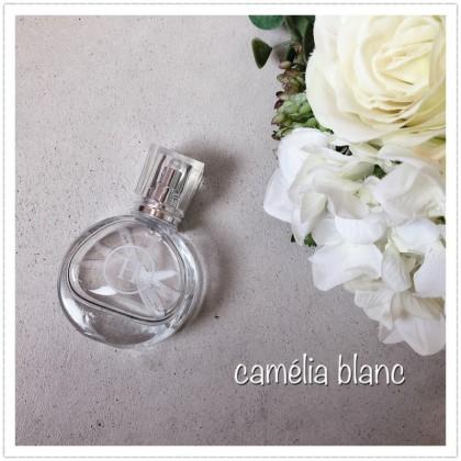 camélia blanc20200908