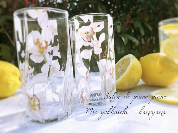 グラス ポセナビ1